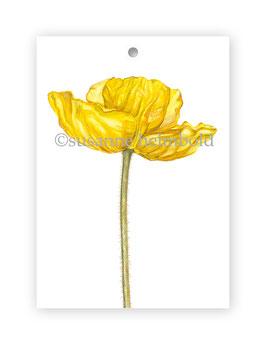 Geschenkanhänger Papaver gelb, Artikelnr. gs028