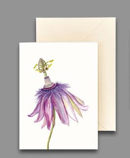 Grußkarte Passionsblume Artikelnr. kl208
