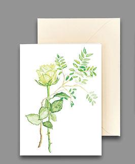 Grußkarte Rosenblüte weiß Artikelnr. kl286