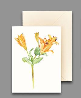 Grußkarte Taglilie orange  Artikelnr. kl 265