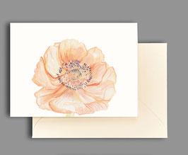 Grußkarte Anemonenblüte Artikelnr. kl 268