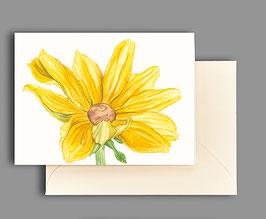 Grußkarte gelber Sonnenhut Artikelnr. kl227