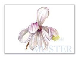 Kunstkarte Magnolie Artikelnr. sr102