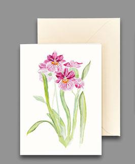 Grußkarte Orchidee purpurrot Artikelnr. kl 271
