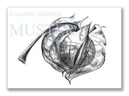 Kunstkarte Lampionfrucht