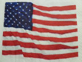 Americanische Flagge Klein