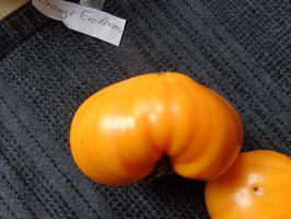 """Fleischtomate """"Orange Erdbeere"""""""