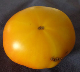 "Fleischtomate ""Giant Lemon"""