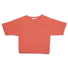 Cropped sweater coral