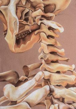 """""""Bones (chalk drawing)"""" von Saija Sollberger"""