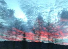 """""""Sky through glass"""" von Rob Drelich"""