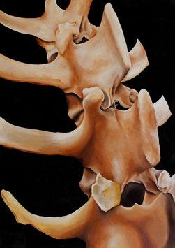 """""""Backbone"""" von Saija Sollberger"""