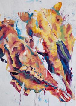 """""""Cow skulls"""" von Saija Sollberger"""