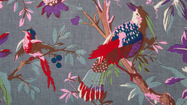 Oiseaux de paradis dans une nature gris perle