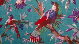 Oiseaux de paradis dans une nature bleue (1)