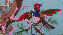 Oiseaux de paradis dans une nature bleue (2)