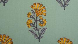 Fleur d'arnica ocre orangé