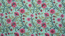 Marguerites aux pétales roses (2)