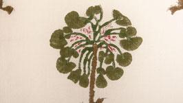 Palmiers vert kaki
