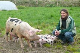 Terrines porc (lot de 3 différentes)
