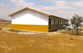 2010 Primary School Meserani