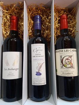Pack Bordeaux Merlot - Maison Eguiazabal