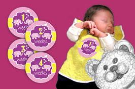 Baby Meilenstein Aufkleber | 1-4 Wochen -  Elefant - pink gelb