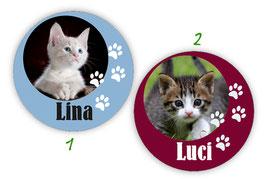 Namensaufkleber rund | Tierbabys - Katze