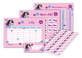 4 er Schulset:  Stundenplan + Lernposter + Aufkleber | Pony Blumen - rosa