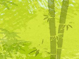 XXL ECO - Vliesbordüre   Bambuswald
