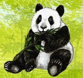 XXL ECO  Kinderbordüre | Pandabären
