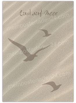 Posterdruck - Lust auf Meer - Möwen