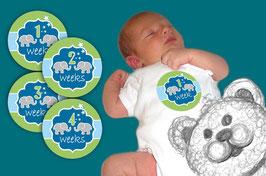 Baby Meilenstein Aufkleber | 1-4 Wochen -  Elefant - blau grün