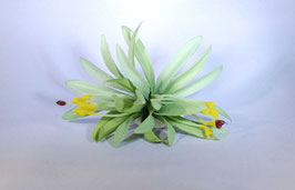 12 cm Spider-Lily-Haarclip grün
