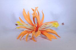 12 cm Spider-Lily-Haarclip orange