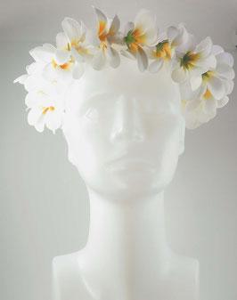 Blütenkranz Plumeria