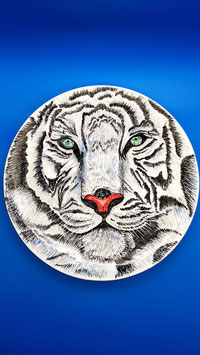 Piatto tigre bianca delle nevi