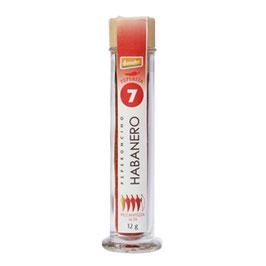 Habanero Red Savina / Capsicum Chinense 7
