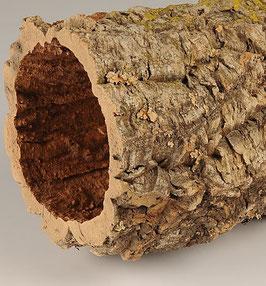 Boomtam van sierkurk 10 a 20 cm doorsnede