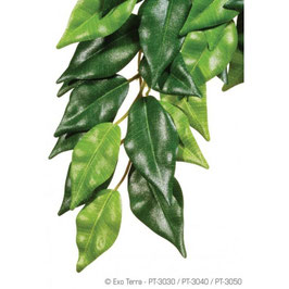 Exo Terra Ficus Silk M