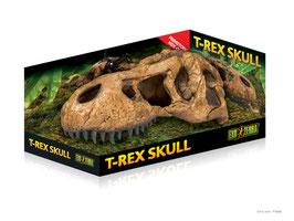 Schedel t-rex