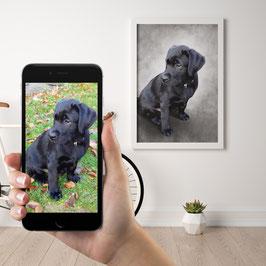 Haustier Portrait als Poster Komplettpaket, Zeichnung im Preis enthalten