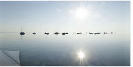 ZRH Segelboote Ufenau 004a, Segelboote Morgenstimmung