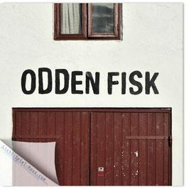 StadtSicht Kopenhagen, Odden Fisk 001