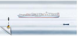 Hamburgensie 125, Maersk Containerschiff