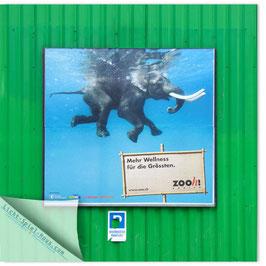 StadtSicht Zürich 100a, Zoo Zürich 005