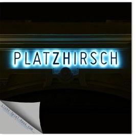 StadtSicht Zürich 044b, Platzhirsch 001