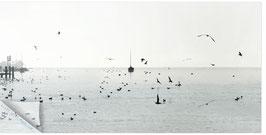 ZRH Zürisee Segelboot 002, Segelboot bei Winterstimmung