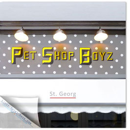 StadtSicht Hamburg 012a, Pet Shop Boyz 001