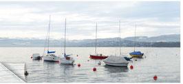 ZRH Zürisee 300a, Segelboote am Zürichsee